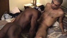 Horny black thug enjoys sliding it up his gay lover's pink asscrack