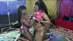 These big black babes have huge tits and asses and are perfect for each other