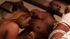 Mistress gives her slave a present with a black dick to eat and bang
