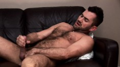 Hot hairy bear lies back on the couch to stroke his cock and fuck his ass with a dildo