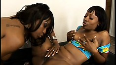 Naughty black hos with thick asses drill each other's wet cunt