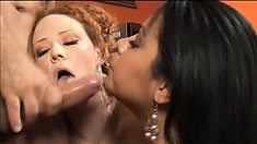 Lucky stud gets to shove it deep inside two tarts' bungholes
