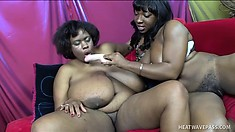 These big black babes with huge tits love taking care of each other