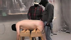 Rednecks tie down a chubby dude and give him a rough spanking