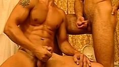 A massive group of well hung guys enjoy an intense anal fuckfest