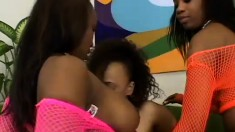 Three black lesbians make sure everyone has a couple of orgasms
